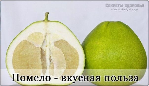 Помело (памела), полезный и вкусный экзотический фрукт — Мир ... | 348x604